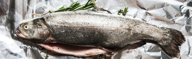 fisch-hartls-kulinarium
